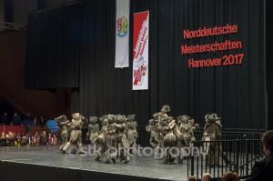 TK-Roten-Husaren - Halbfinale 2017 Hannover 03