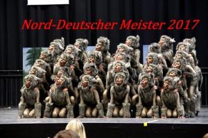 TK-Roten-Husaren - Halbfinale 2017 Hannover 26